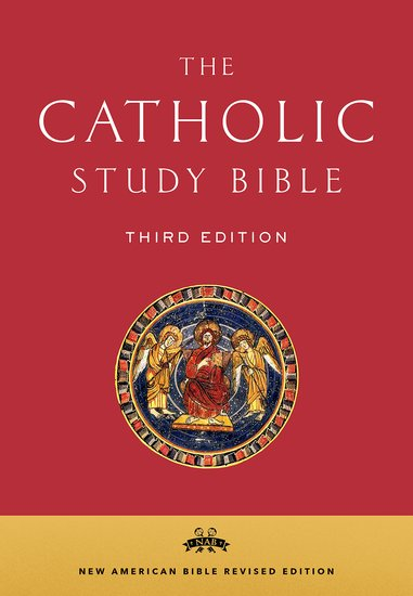 Catholic Study Bible Nabre New American Bible Revised